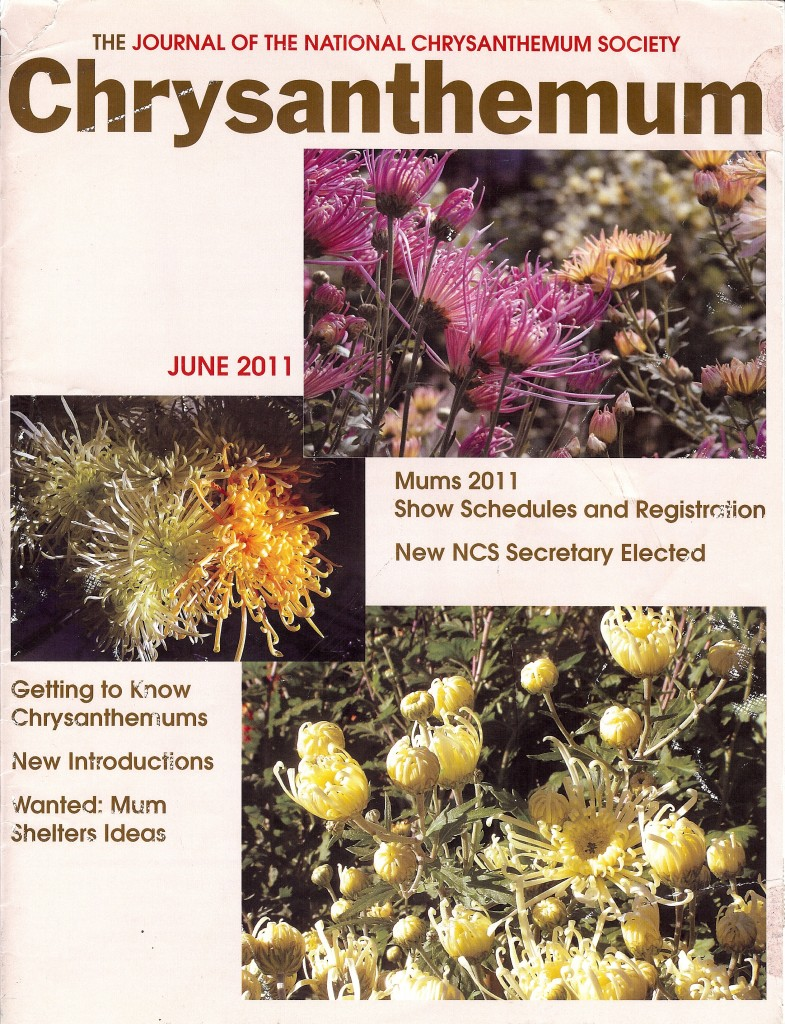 Chrysanthemum Article Cover